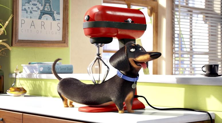 animations kom die pets der erste trailer